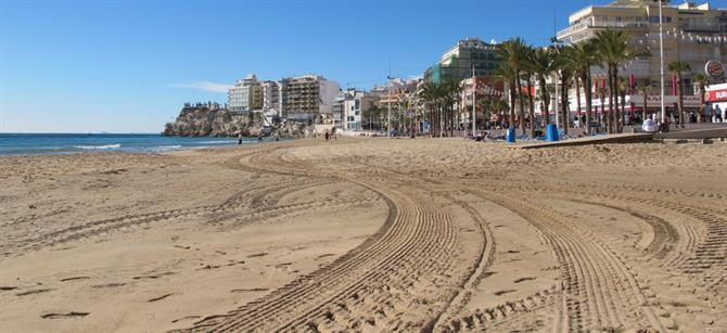 Afternoon delight at Benidorm's Levante beach Walking in Benidorm