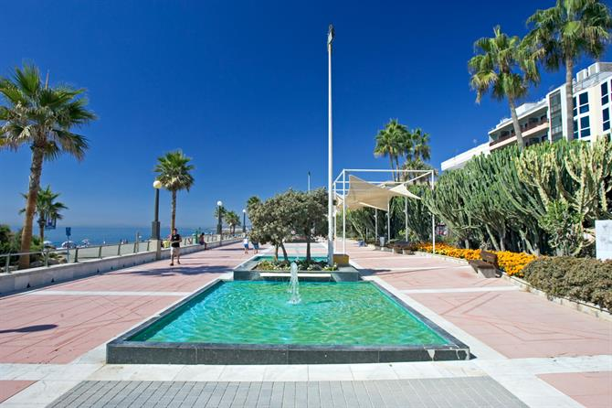 Estepona Five Pet Friendly Spanish Destinations